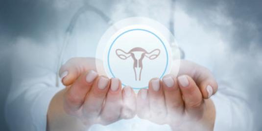 Pani lekarz prezentująca w dłoniach układ rozrodczy kobiety